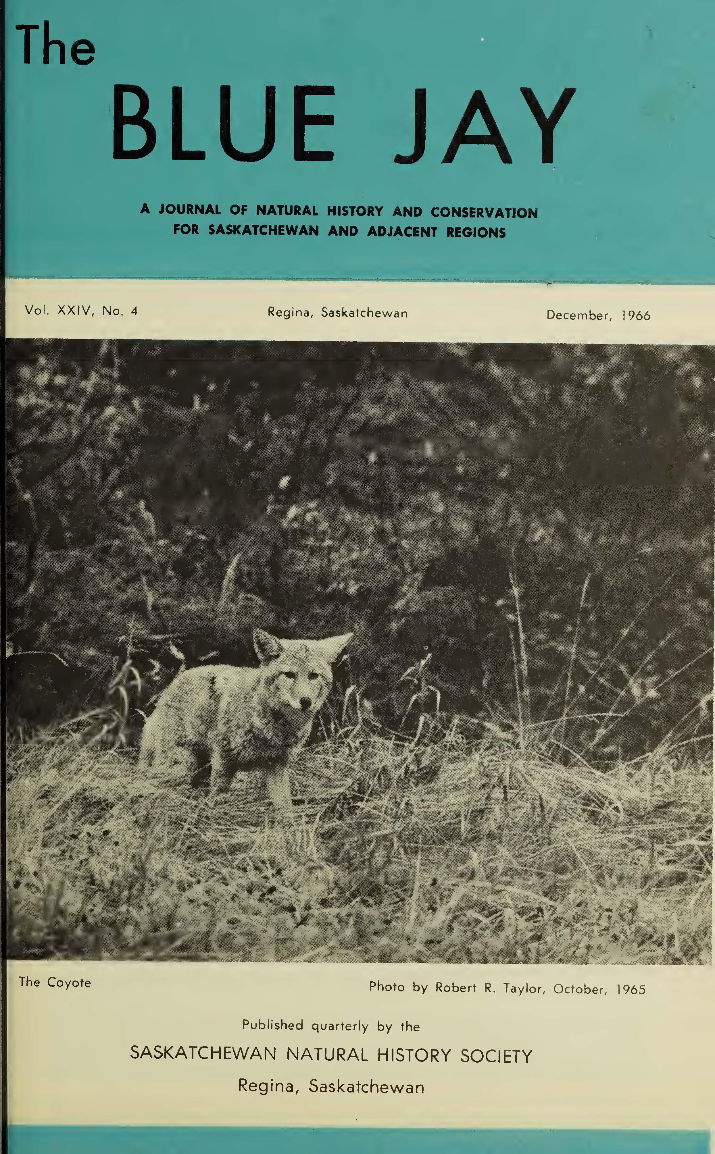 View Vol. 24 No. 4 (1966): December 1966