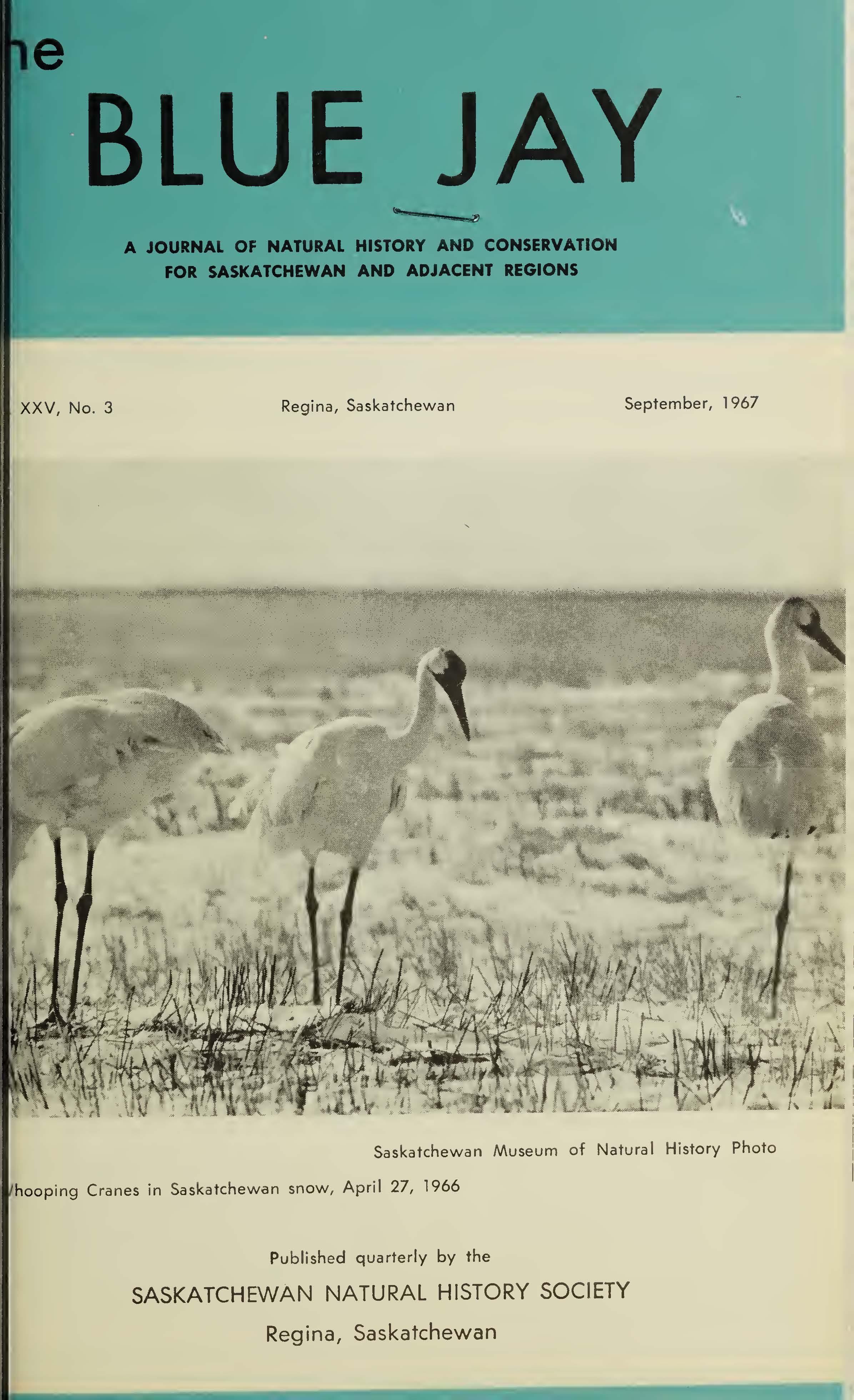 View Vol. 25 No. 3 (1967): September 1967
