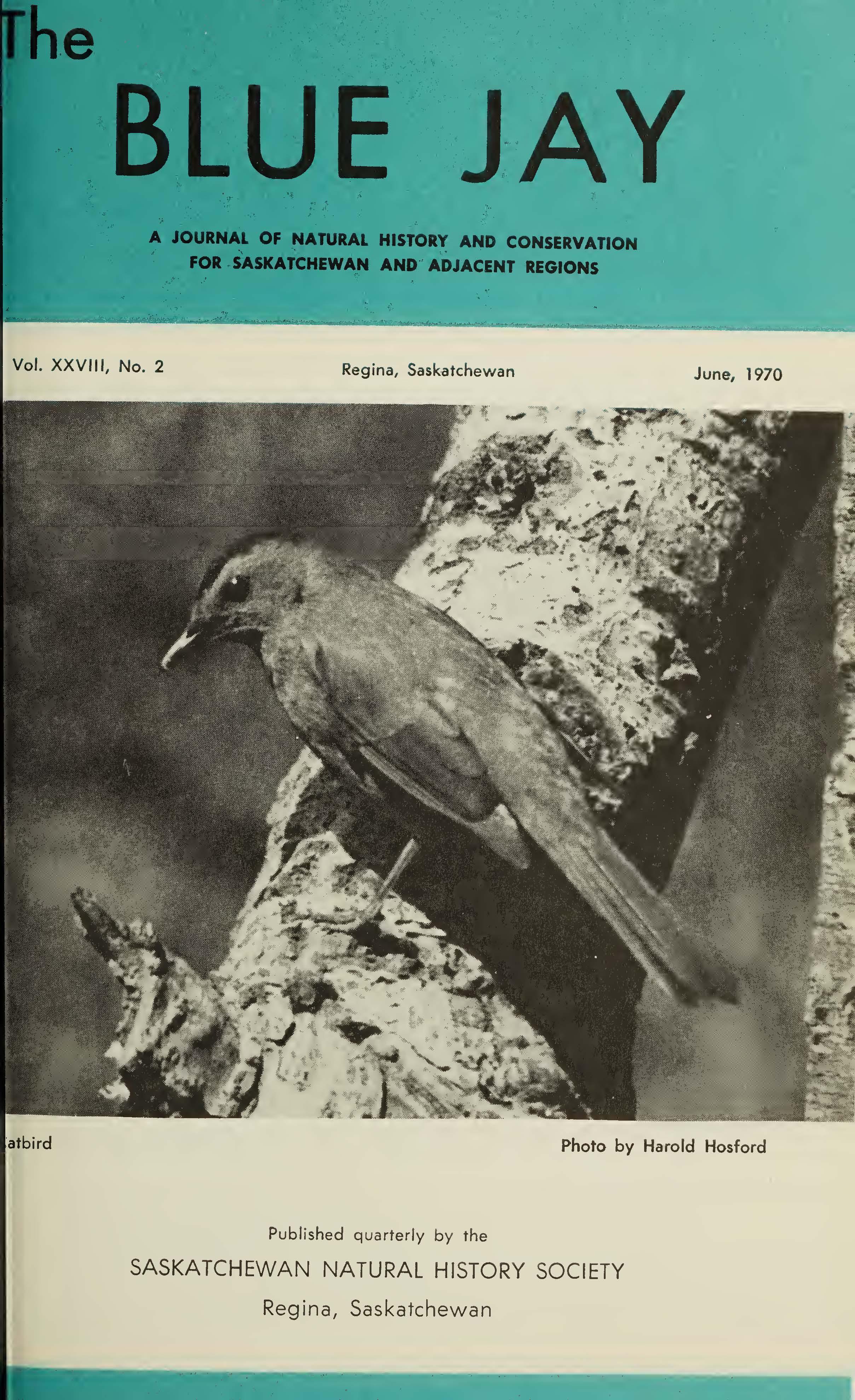 View Vol. 28 No. 2 (1970): June 1970