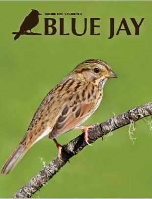 View Vol. 78 No. 2 (2020): Blue Jay Summer 2020