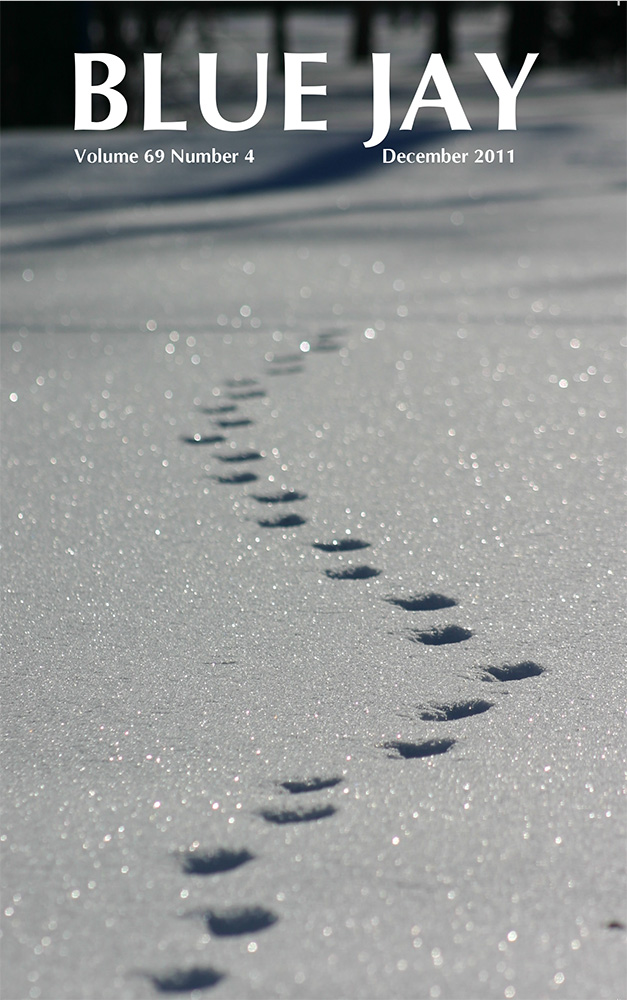 cover image featuring tracks in snow: Tracks leading to our next adventure?